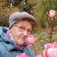 Надежда, 64 года, Стрелец, Новосибирск