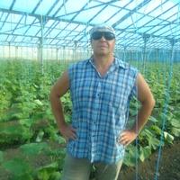 ЮРИЙ ВАРЛАМОВ, 51 год, Лев, Краснодар