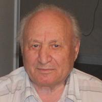 Leonid Gorodetski, 68 лет, Лев, Торонто
