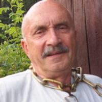 Михаил, 80 лет, Весы, Москва