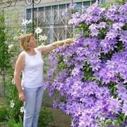 Людмила 53 года (Лев) хочет познакомиться в Пыталове