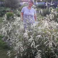 Оксана, 48 лет, Стрелец, Москва