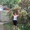 Светлана, 45, г.Тараз (Джамбул)