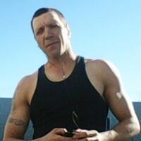 Серега, 37 лет, Телец, Вязьма