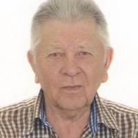 Анатолий Дмитр, 81 год, Близнецы, Армавир