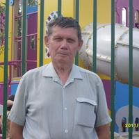 Аркадий, 65 лет, Овен, Казань