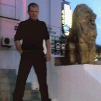 Андрей Галныкин, 37 лет, Дева, Владивосток