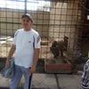 Dima, 28, Karakol