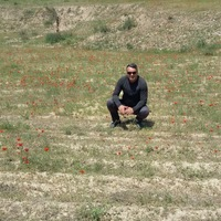 Алим, 45 лет, Стрелец, Наманган
