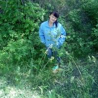Наталья, 47 лет, Стрелец, Волгоград