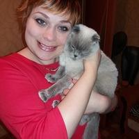Светлана, 41 год, Овен, Желтые Воды