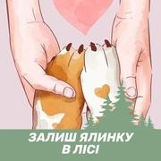 Вікторія 39 Киев