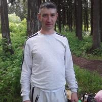 Николай, 37 лет, Стрелец, Пермь