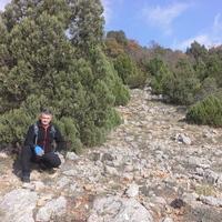 вадик, 40 лет, Козерог, Массандра