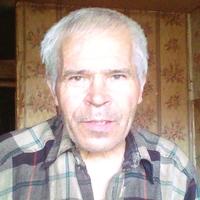 Анатолий, 61 год, Близнецы, Казань