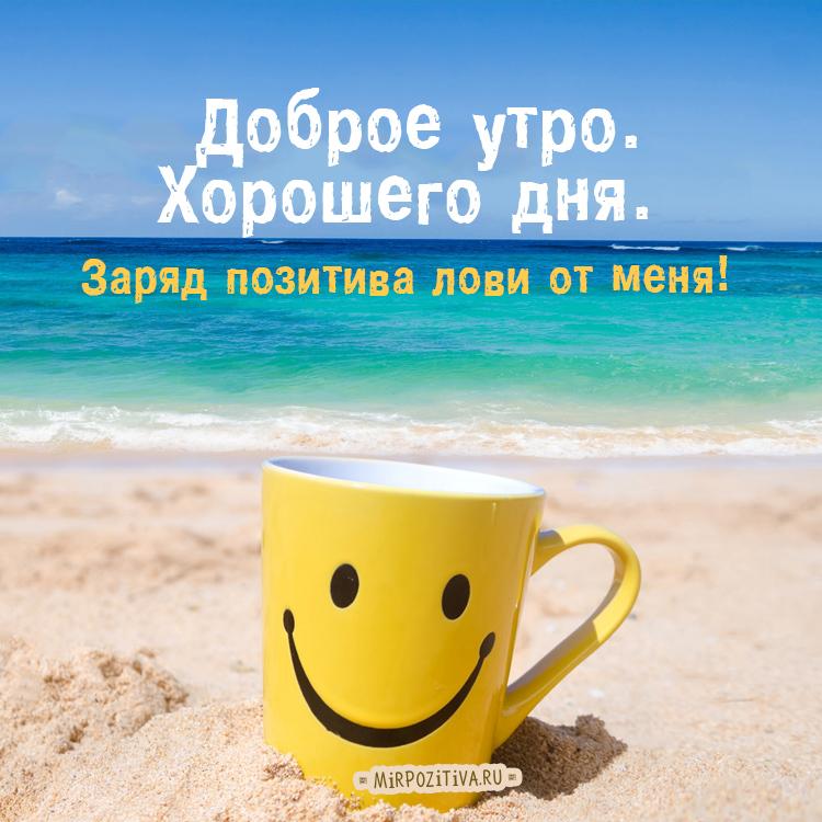 открытки доброго утра и удачного дня книга, наиболее точно