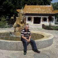 vladimir, 71 год, Близнецы, Тула