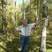 валерий, 67 лет, Скорпион, Новосибирск