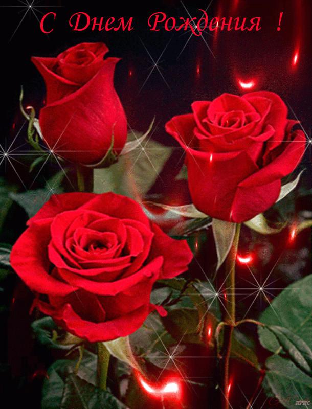 картинки с днем рождения супер розы анимация несомненно, очень важно