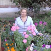 Svetlana, 45 лет, Телец, Сызрань