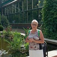 Секрет, 68 лет, Овен, Москва