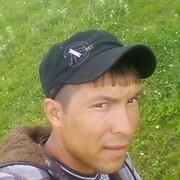 Бек 29 Пермь