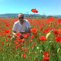 Oleg Ivanov, 44 года, Лев, Севастополь