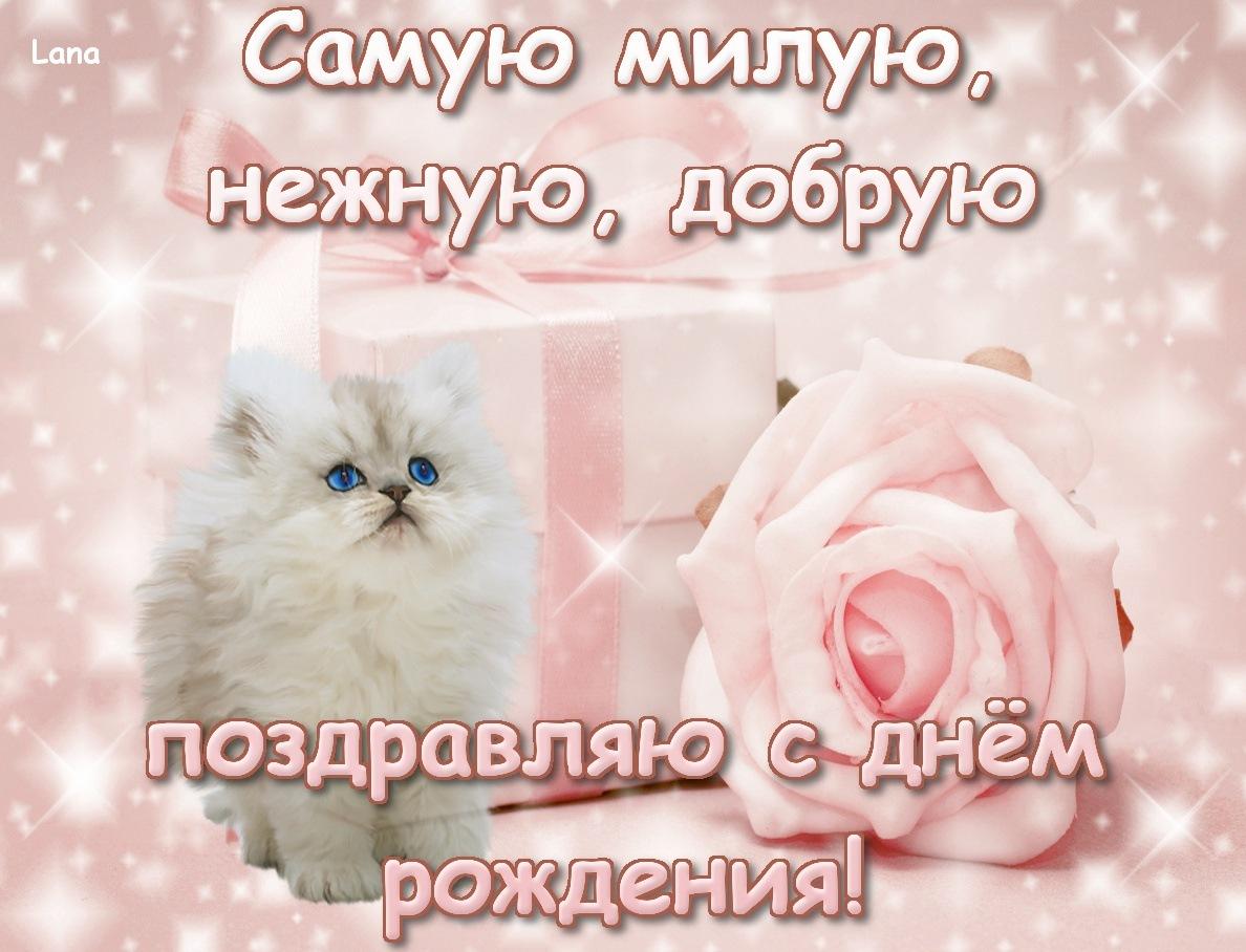 Поздравления на день рождение заловки