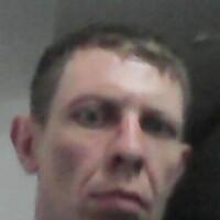 алексей, 39 лет, Телец, Кострома