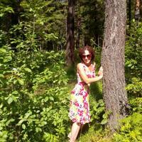 Елена, 44 года, Телец, Кострома