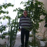 анатолий, 66 лет, Овен, Тверь