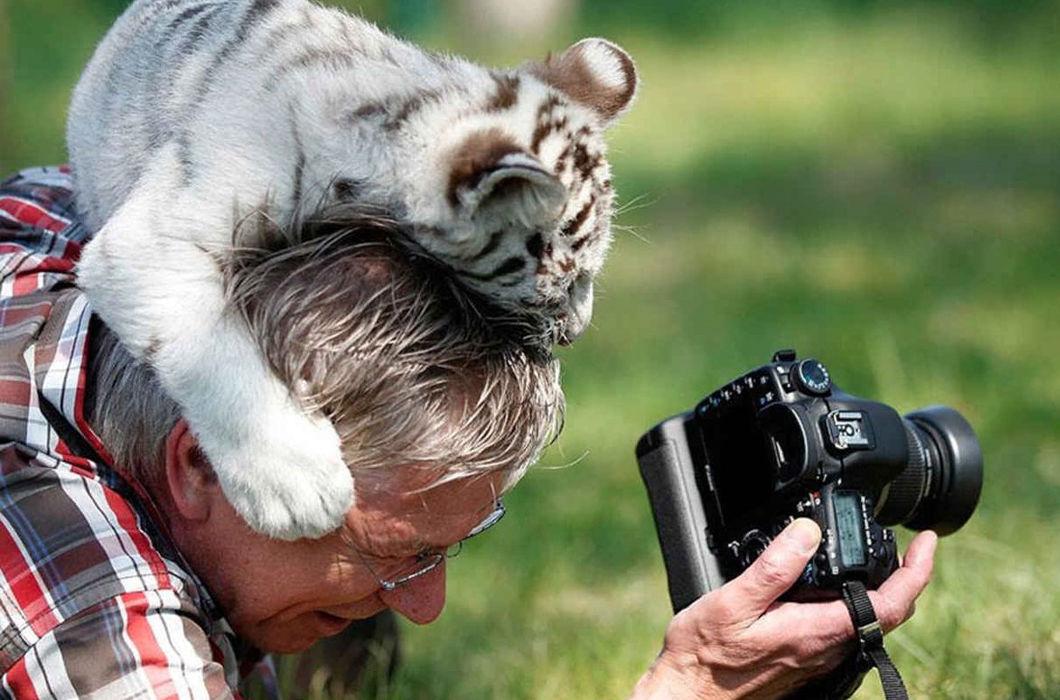 самые смешные фото людей и животных были найдены