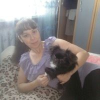 Вера, 38 лет, Овен, Талица