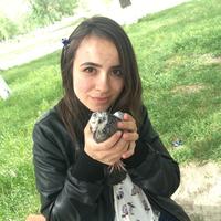 Дарья, 20 лет, Стрелец, Кизляр