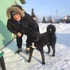 влад, 61, г.Саранск