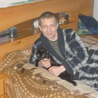 Роман, 41 год, Водолей, Ковров