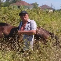 Николай, 42 года, Козерог, Москва