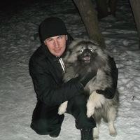 Андрей, 33 года, Стрелец, Новосибирск