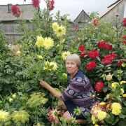 Елена, 63, г.Богучаны