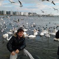 Max, 37 лет, Овен, Одесса