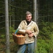 вольдемар, 60, г.Сарапул