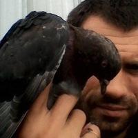 Руслан, 39 лет, Стрелец, Брянск