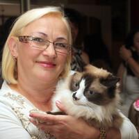 Lara, 61 год, Дева, Гомель