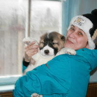 Жужу, 54 года, Козерог, Сергиев Посад