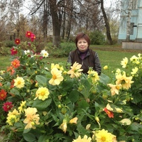 нариса, 46 лет, Близнецы, Пермь