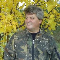 Сергей, 45 лет, Дева, Самара