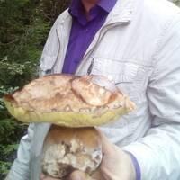 Сергей, 38 лет, Стрелец, Санкт-Петербург