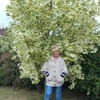 Галина, 56, г.Невель