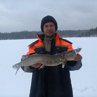 Николай, 39 лет, Скорпион, Челябинск