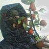 Pasha, 23, г.Гадяч
